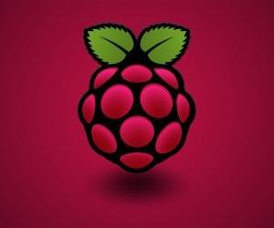 Raspberry Pi logo red background