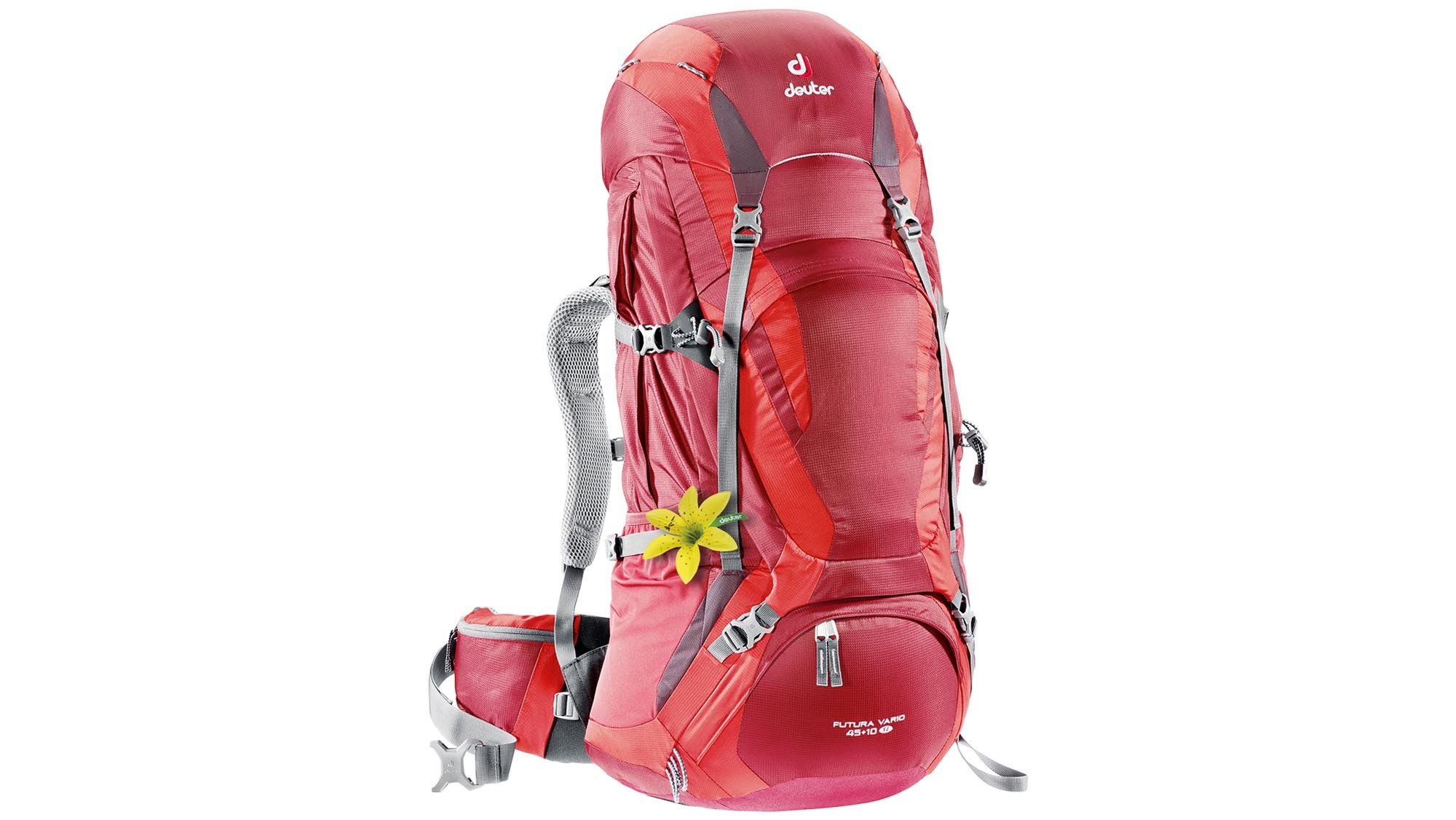 b72dc81048 Deuter s backpacks are designed with a specifically male or female fit