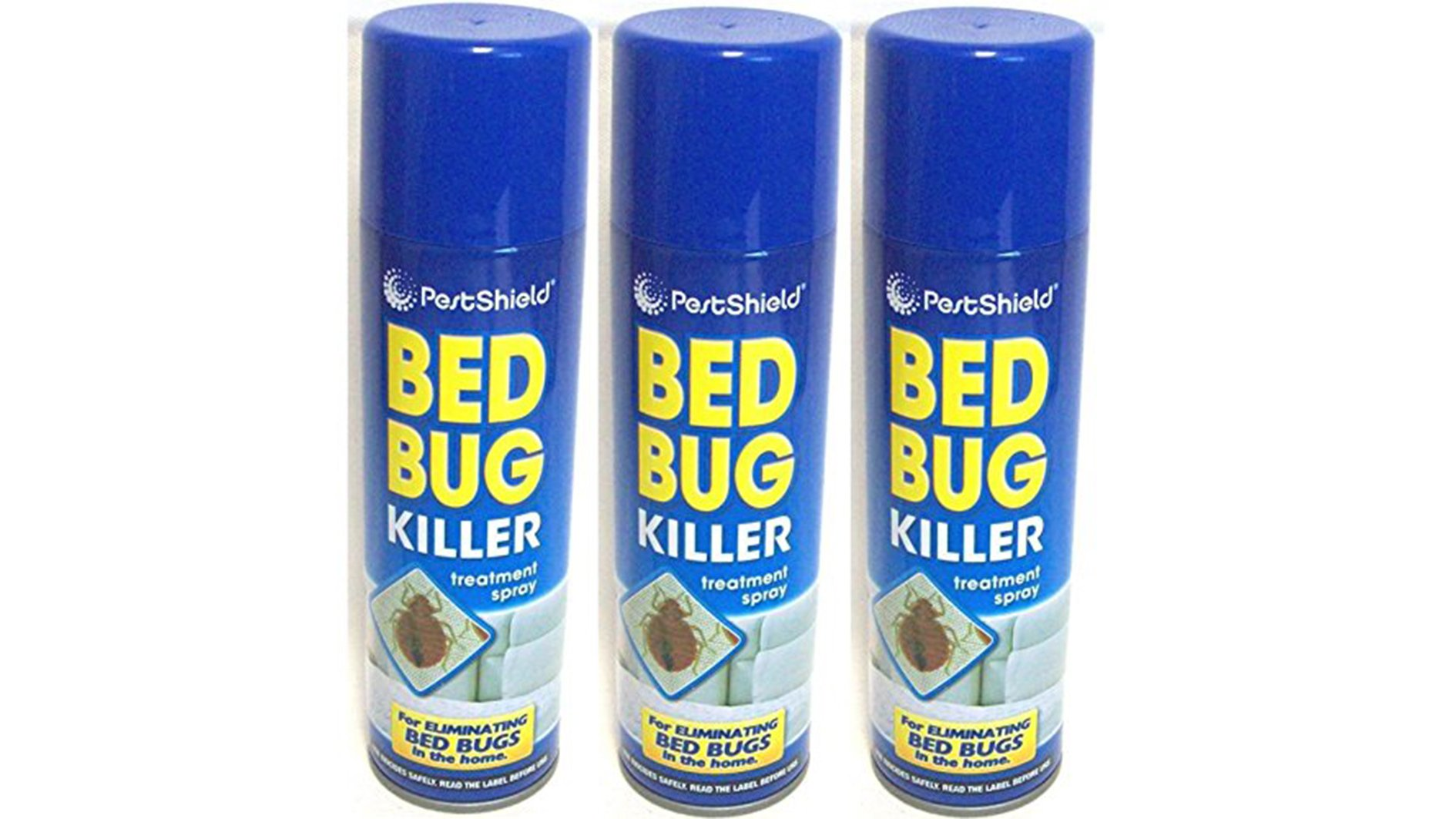 How To Get Rid Of Bedbugs Tips Tricks And Our Pick Of The Best Bug