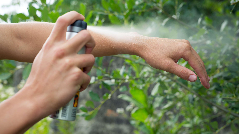 Best Mosquito Repellent 2020 The Best Natural Deet Deet Free