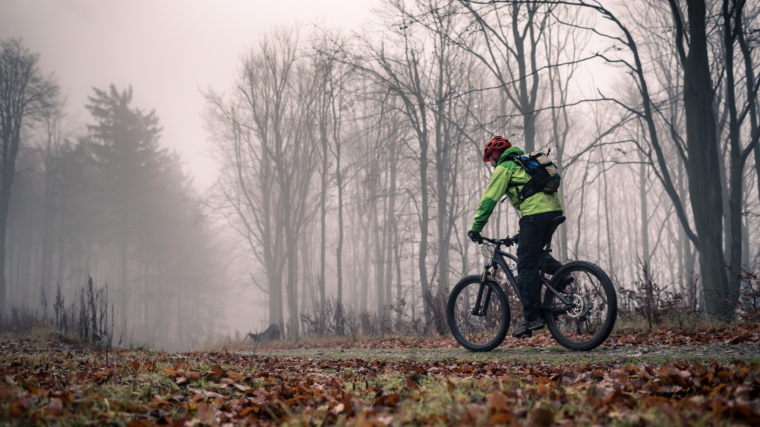 Best cycling jacket: Stay dry and warm whatever the weather