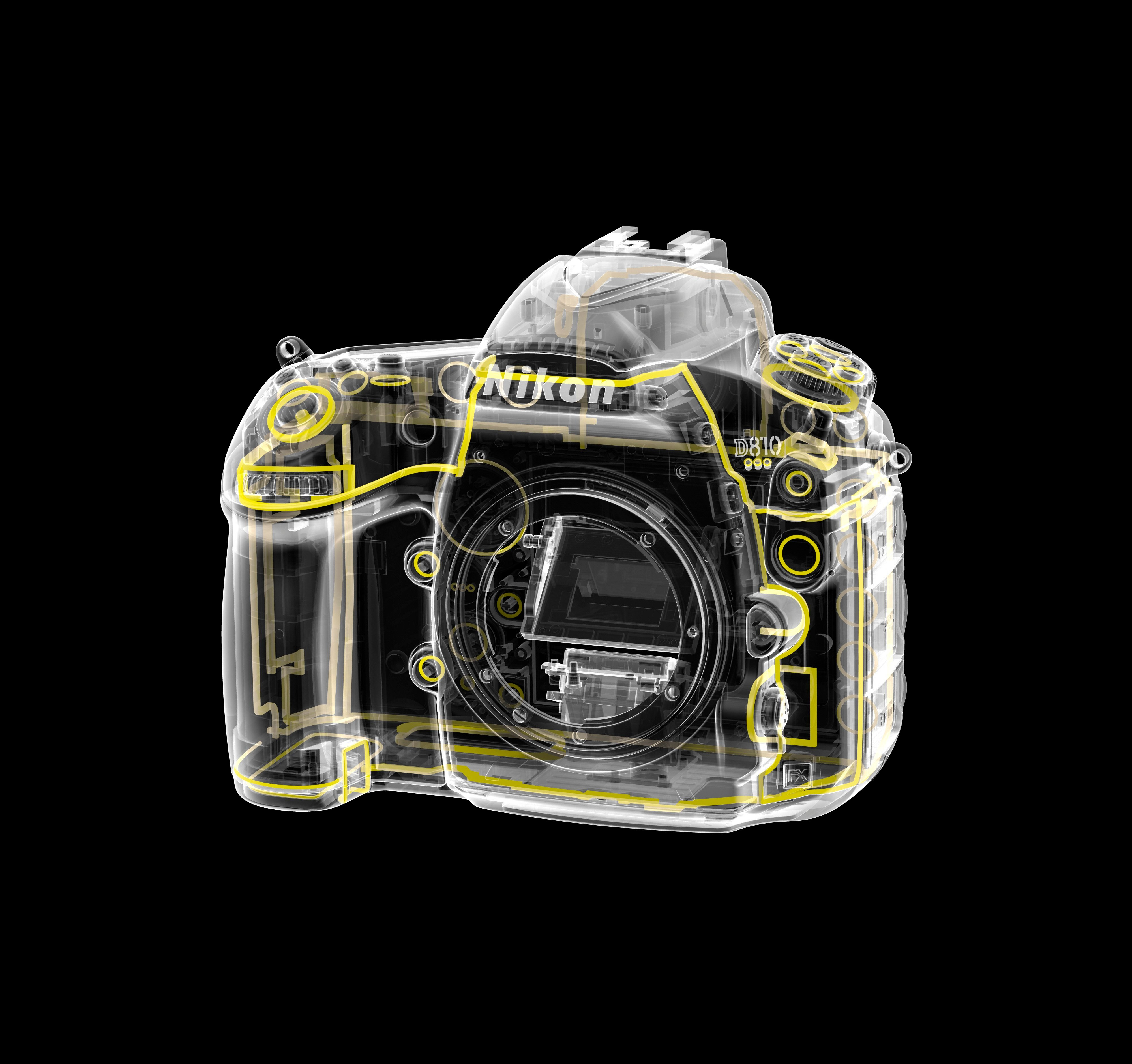 Nikon D810 review - first look, release date and UK price