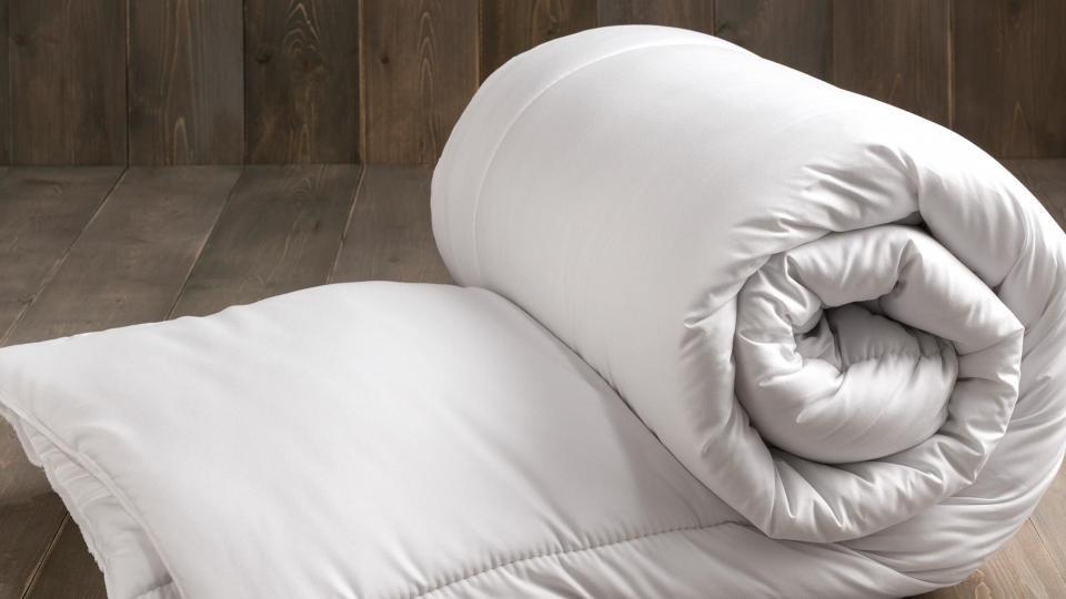 Best Fogarty Duvets, Fogarty Pillows