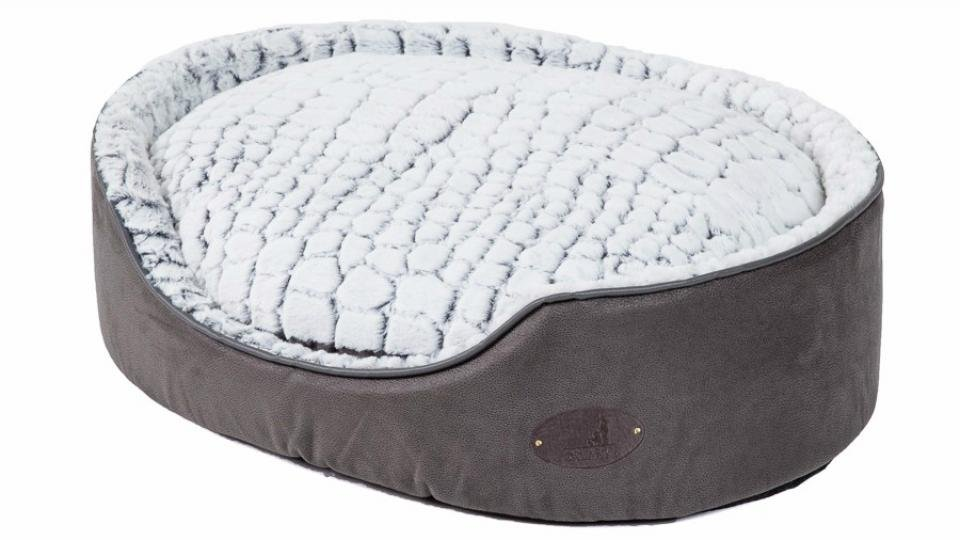 Best Dog Bed The Cosiest Cots And Couches For Your Canine Companion