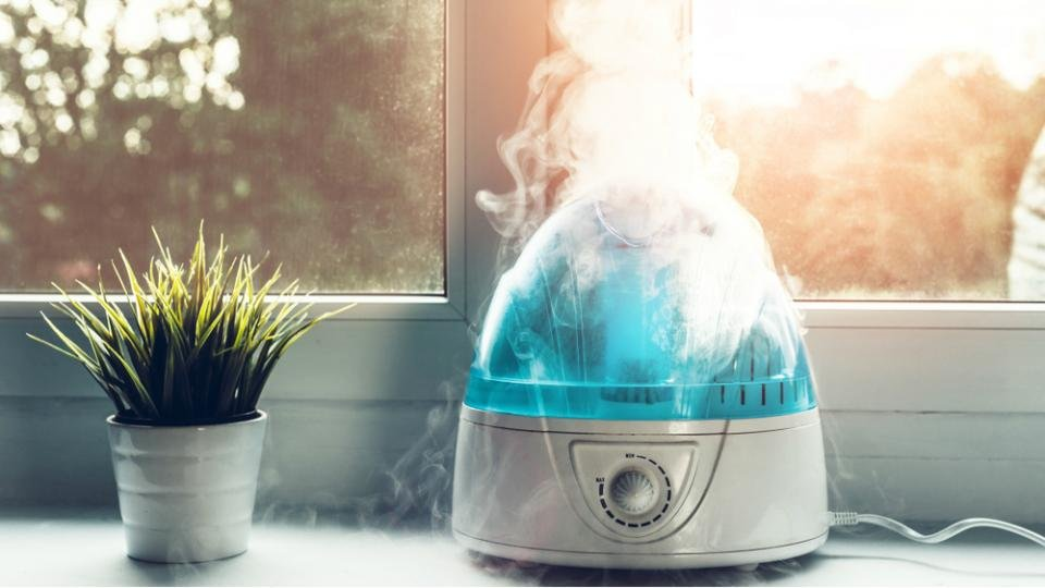 5 Best Warm Mist Humidifiers Reviews of 2020 in the UK