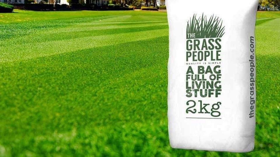 Best grass seed 2019: The best seed mixes for busy gardens and
