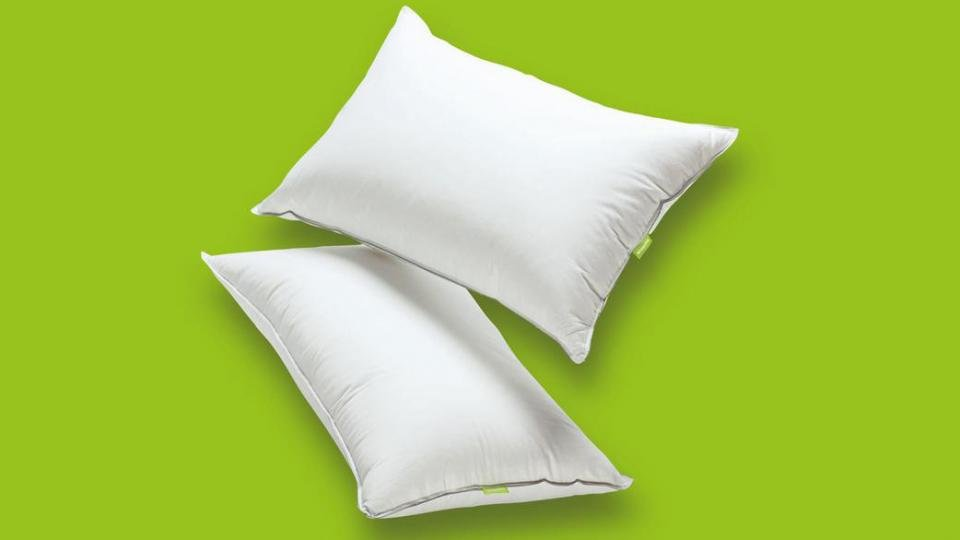 Latex Foam Firm Density Pillow