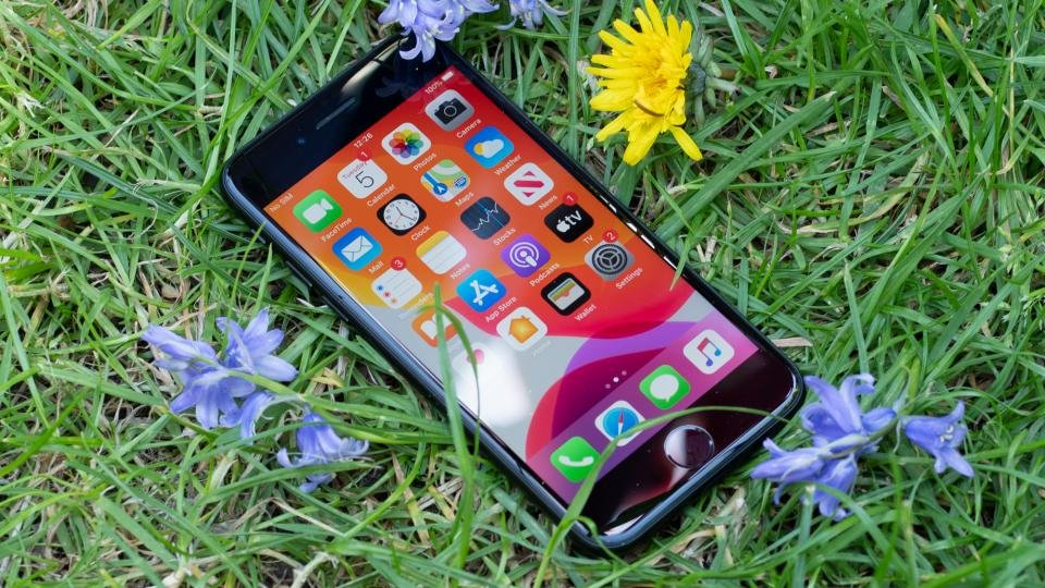 Apple iPhone SE (2020) with grass and flowers